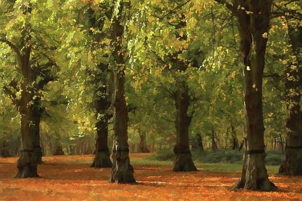 Nottinghamshire Photograph - Nottinghamshire, England, Uk, Clumber by Chris Upton