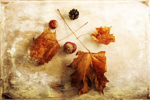 Photograph - November Mood by Randi Grace Nilsberg