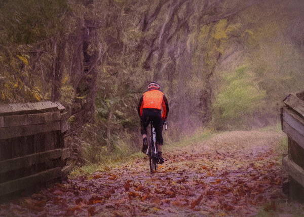 Photograph - November Ride by Jack Wilson
