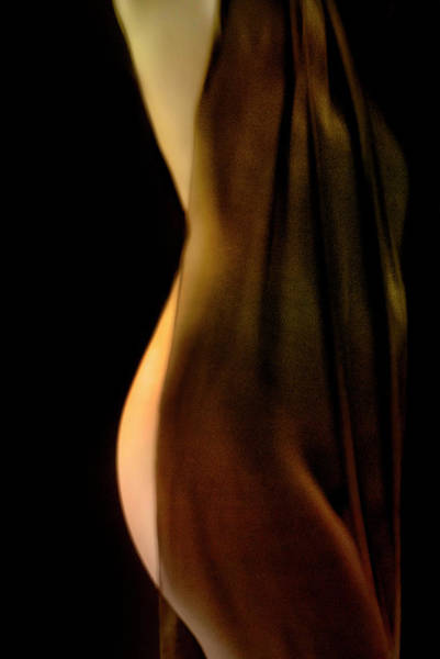 Photograph - Nude Draped In Fabric From Side by Bob Cornelis