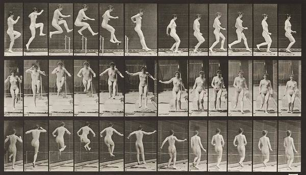 High Jump Painting - Nude Woman Jumping  Running Straight High Jump  Animal Locomotion        Plat  by Eadweard Muybridge