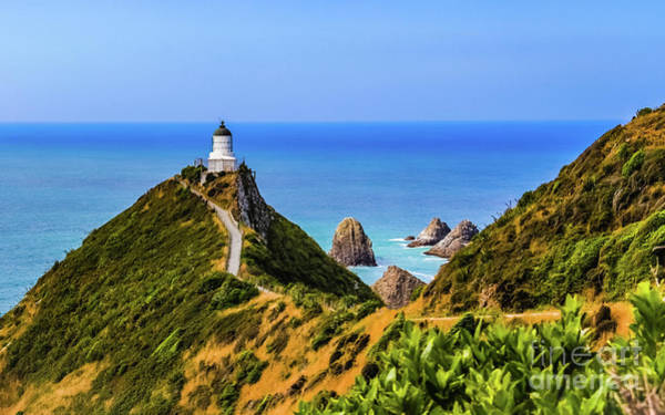 Photograph - Nugget Point Lighthouse, New Zealand by Lyl Dil Creations