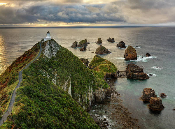 Promontory Point Photograph - Nugget Point Lighthouse, Otago, South Island, New Zealand by Andy Trowbridge / Naturepl.com
