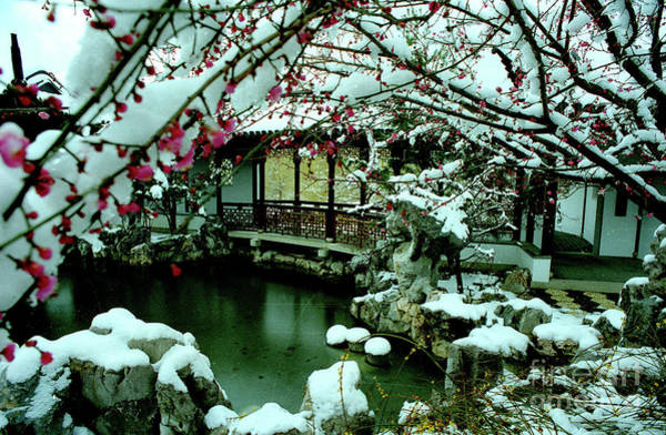 Wall Art - Photograph - Ny Chinese Scholars Garden, Spring Snow by Anthony Butera