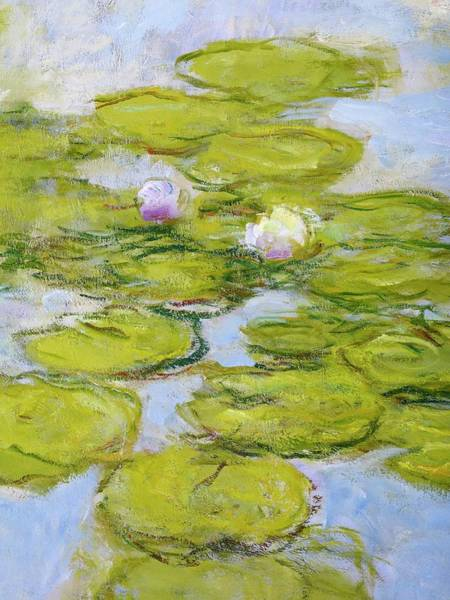 Painting - Nympheas, Detail By Claude Monet by Claude Monet