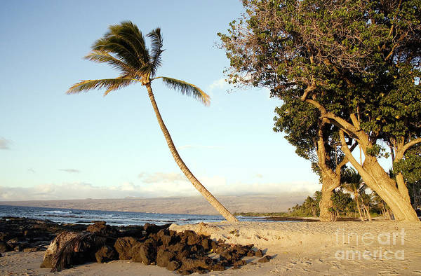 Photograph - Oahu, Hawaii, 2005 by Carol Highsmith