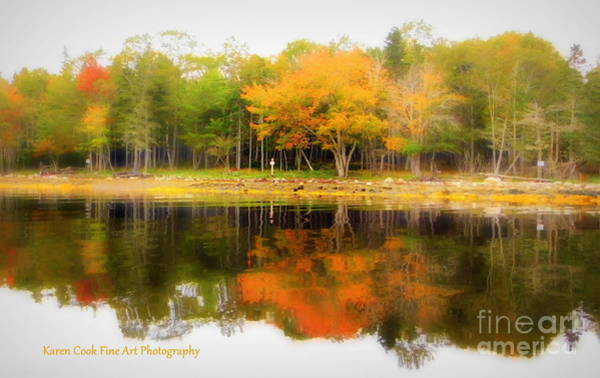 Treasure Hunt Wall Art - Photograph - Oak Island Gold by Karen Cook