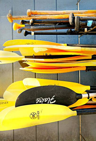 Wall Art - Photograph - Oars by Diana Angstadt