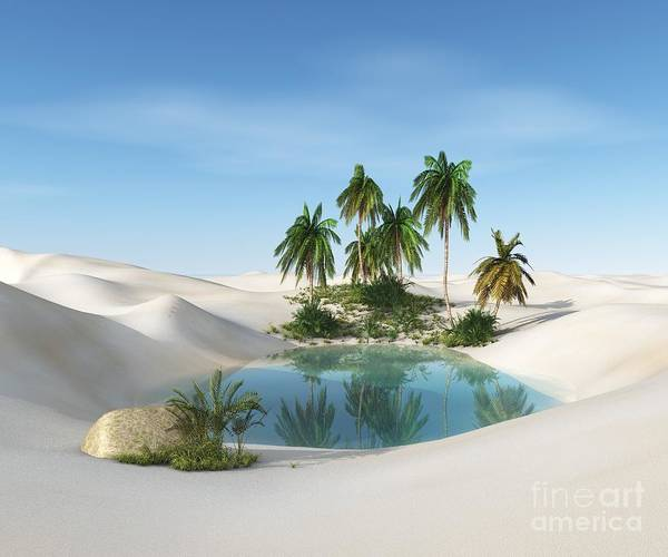 Wall Art - Digital Art - Oasis In The Desert. Palm Trees And by Ustas7777777