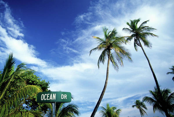 Tropical Climate Photograph - Ocean Drive, South Beach, Miami by Hisham Ibrahim