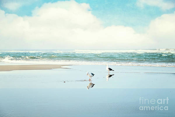 Wall Art - Photograph - Ocean Reflections by Sylvia Cook