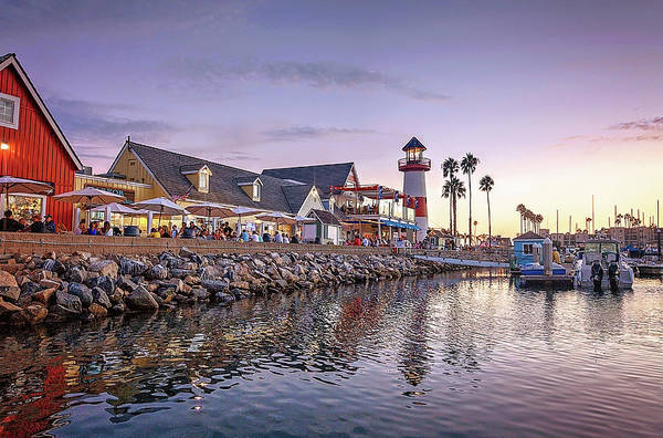 Wall Art - Photograph - Oceanside Harbor by Ann Patterson
