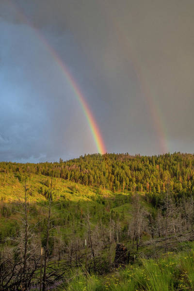 Photograph - Ochoco Divide Rainbow  by Matthew Irvin