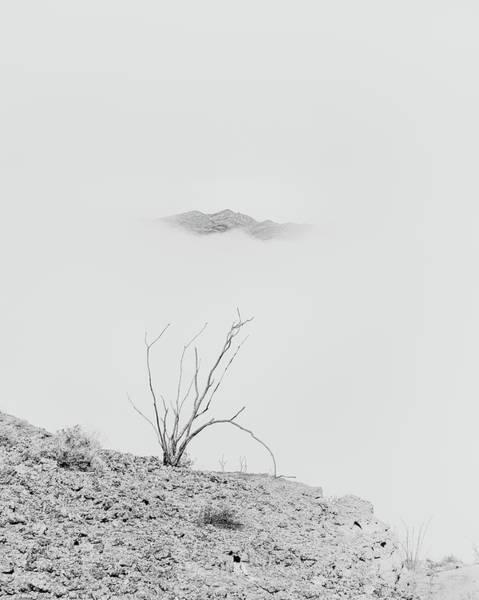 Ocotillo Wall Art - Photograph - Ocotillo, Mountain And Fog by Joseph Smith