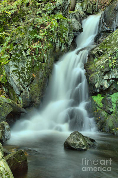 Photograph - October At Goldmine Brook Falls by Adam Jewell