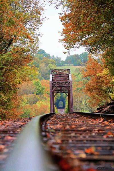 Photograph - Looking For Fall by Wesley Nesbitt
