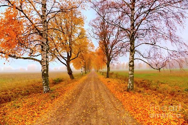 Autumn Colors Digital Art - October Morning 6 by Veikko Suikkanen