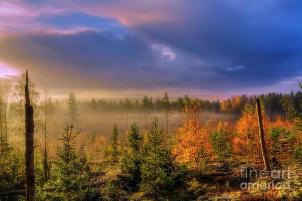 Salo Wall Art - Photograph - October Morning 9 by Veikko Suikkanen