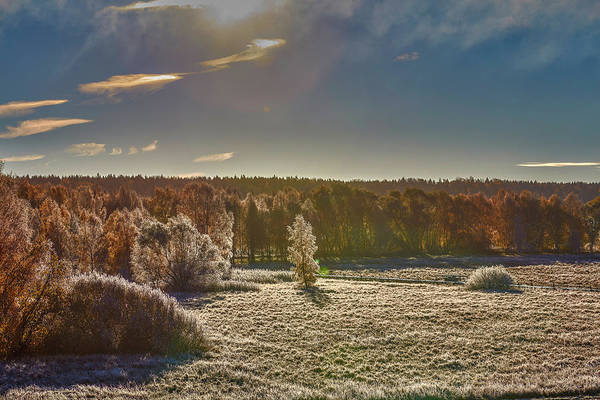 Photograph - October Morning #i0 by Leif Sohlman