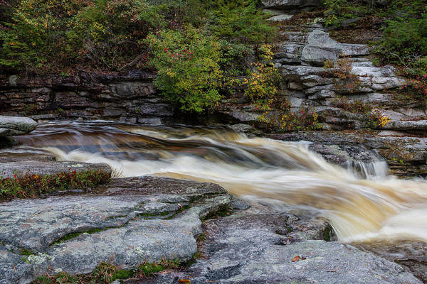 Photograph - October Morning On The Peterskill II by Jeff Severson