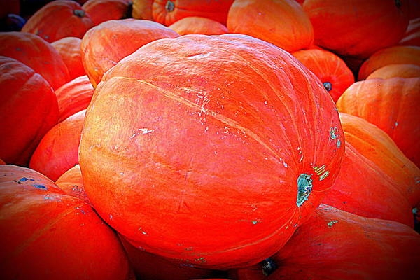 Photograph - October Pumpkin by Cynthia Guinn