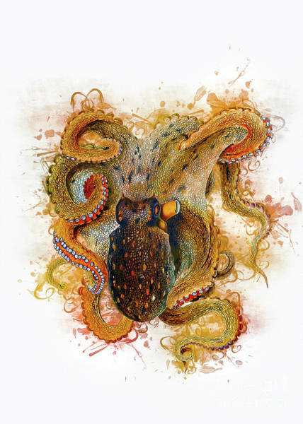 Digital Art - Octopus by Ian Mitchell