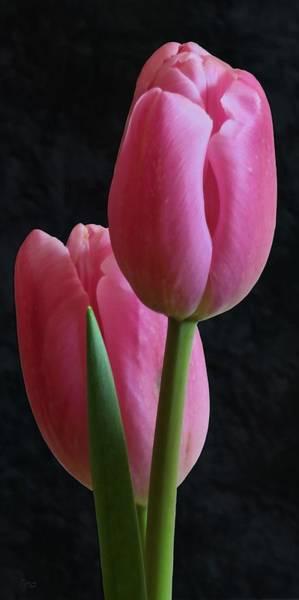 Joyous Mixed Media - Ode To Spring by I'ina Van Lawick