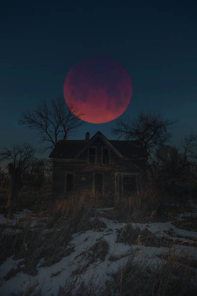 Blood Moon Wall Art - Photograph - Of Wolf And Man  by Aaron J Groen