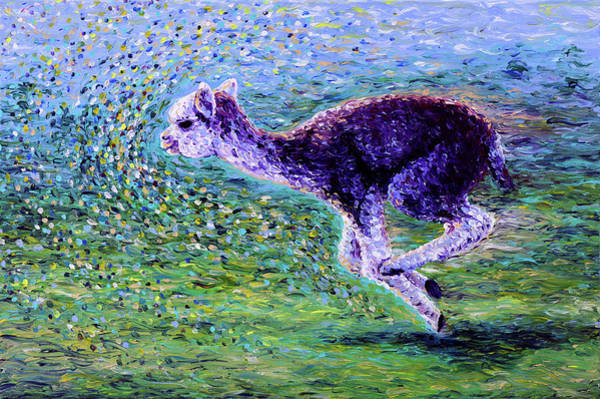 Alpaca Painting - Off To The Races by Bari Rhys
