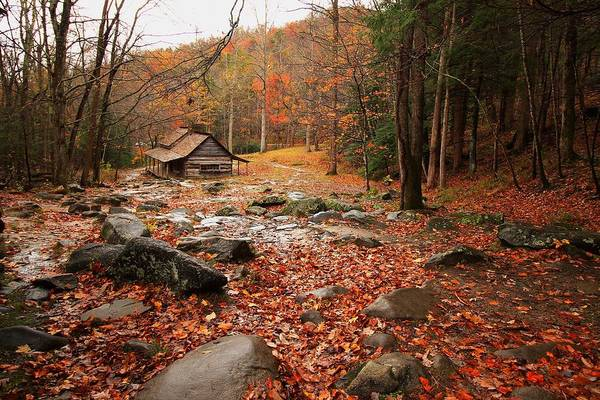 Wall Art - Photograph - Ogle's Cabin In Autumn by Kevin Wheeler
