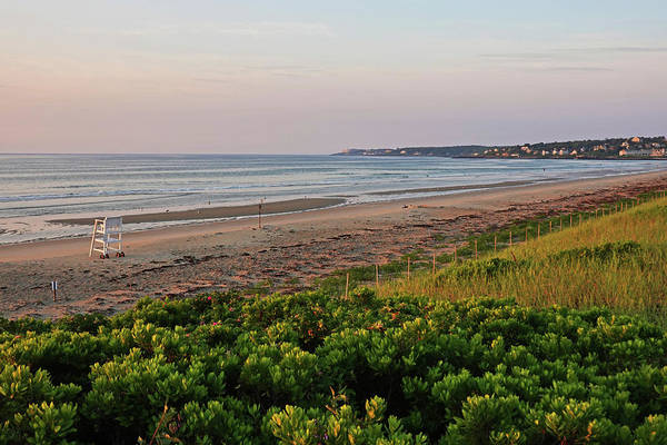 Photograph - Ogunquit Beach Foliage Ogunquit Maine Sunrise by Toby McGuire
