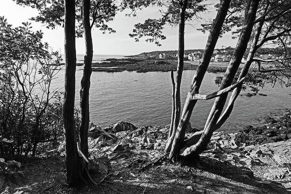 Photograph - Ogunquit Maine View From Marginal Way Black And White by Toby McGuire