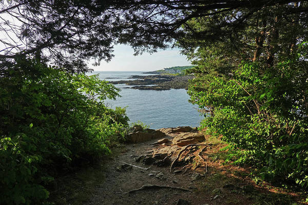 Wall Art - Photograph - Ogunquit Maine View From Marginal Way Green Trees by Toby McGuire