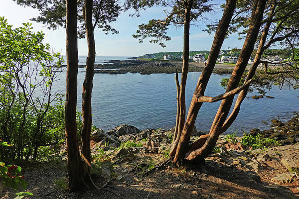Wall Art - Photograph - Ogunquit Maine View From Marginal Way by Toby McGuire