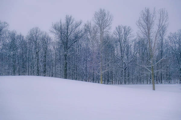 Photograph - Ohio Country Winter by Dan Sproul