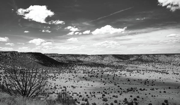Photograph - Oklahoma Beauty Black White by Andrea Anderegg