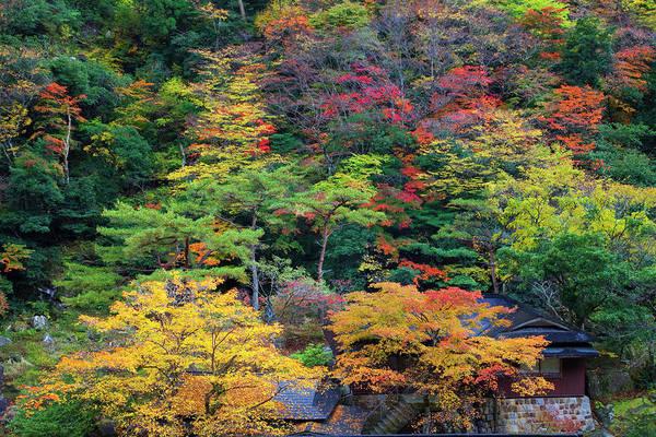 Okayama Prefecture Photograph - Okutsu Gorge, Okayama Prefecture by Keita Sawaki/a.collectionrf