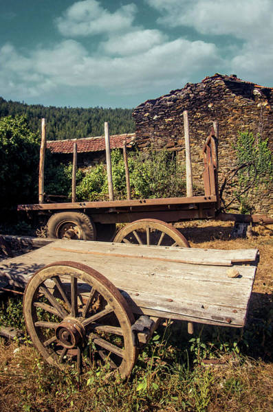Wall Art - Photograph - Old Abandoned Wagons by Carlos Caetano