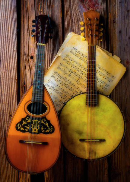 Wall Art - Photograph - Old Banjo And Mandolin by Garry Gay