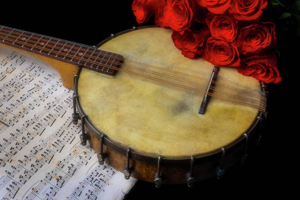Wall Art - Photograph - Old Banjo And Red Roses by Garry Gay