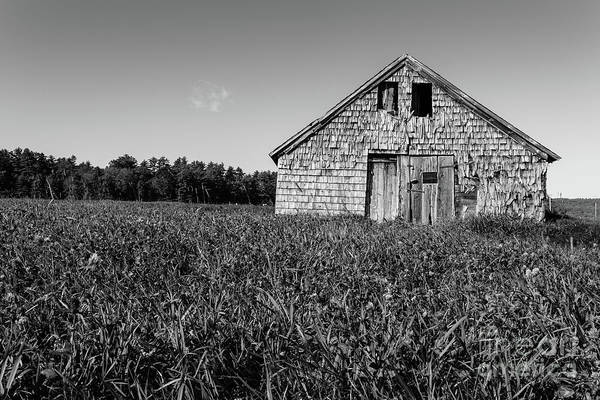 Wall Art - Photograph - Old Barn Andover New Hampshire Black And White by Edward Fielding