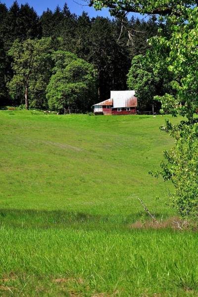 Photograph - Old Barn In A Willamette Valley Pasture by Jerry Sodorff