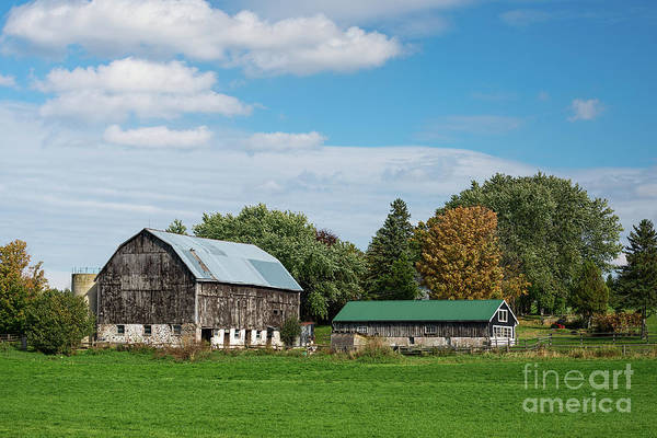 Photograph - Old Barns With Green Roofs by Les Palenik