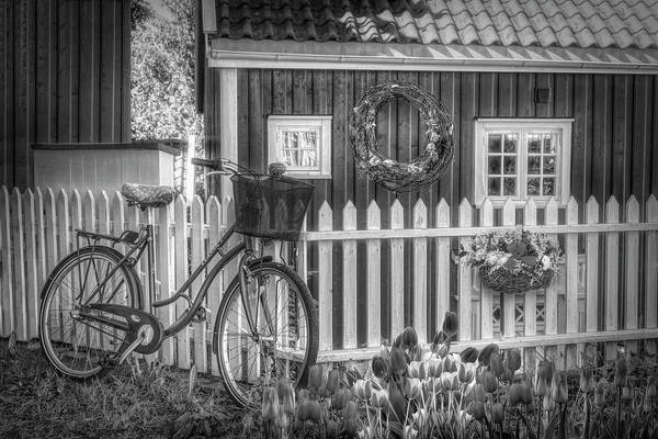 Wall Art - Photograph - Old Bicycle In The Garden In Black And White by Debra and Dave Vanderlaan