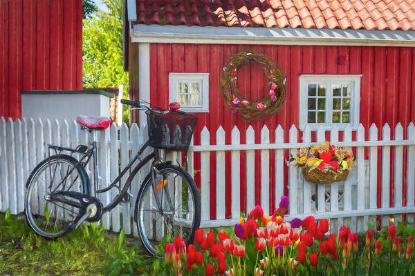 Photograph - Old Bicycle In The Garden Painting by Debra and Dave Vanderlaan