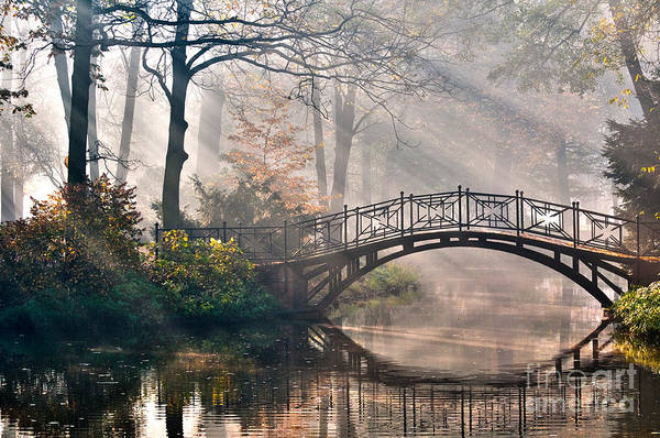 Wall Art - Photograph - Old Bridge In Autumn Misty Park - Hdr by Gorillaimages
