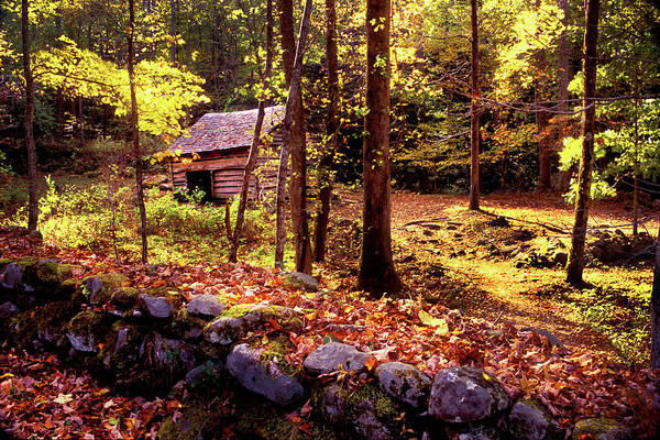 Photograph - Old Corn Crib In The Woods by Paul W Faust - Impressions of Light