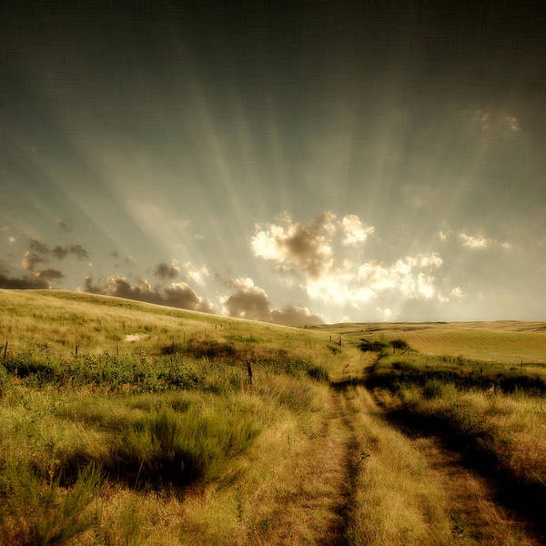 Nebraska Landscape Photograph - Old Country Road And Sunset by Moosebitedesign