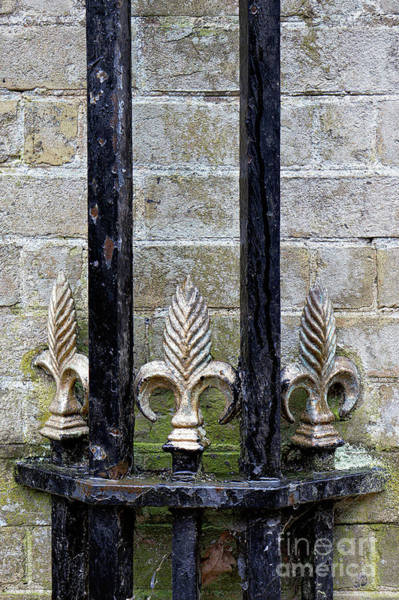 Wall Art - Photograph - Old Decorative Railing by Tom Gowanlock