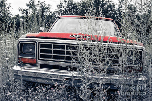 Photograph - Old Dodge Pickup In The Weeds White River Junction Vermont by Edward Fielding